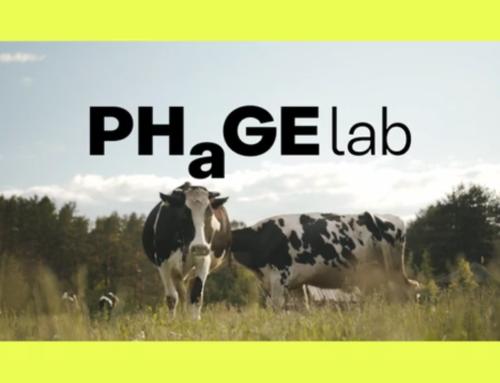Phage Lab
